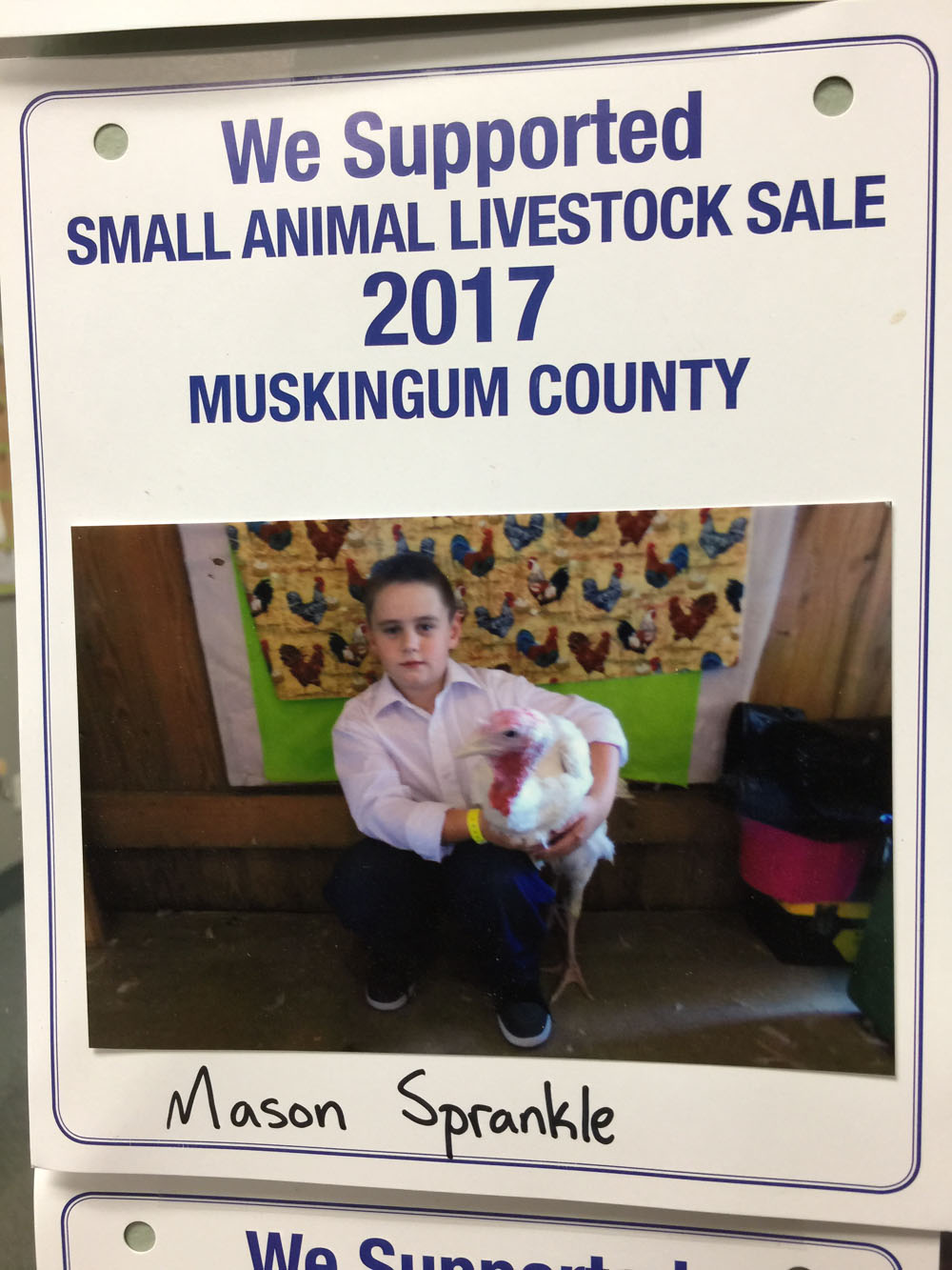 2017 Zemba Bros Community Support Muskingum County Fair Live Stock Auction 6
