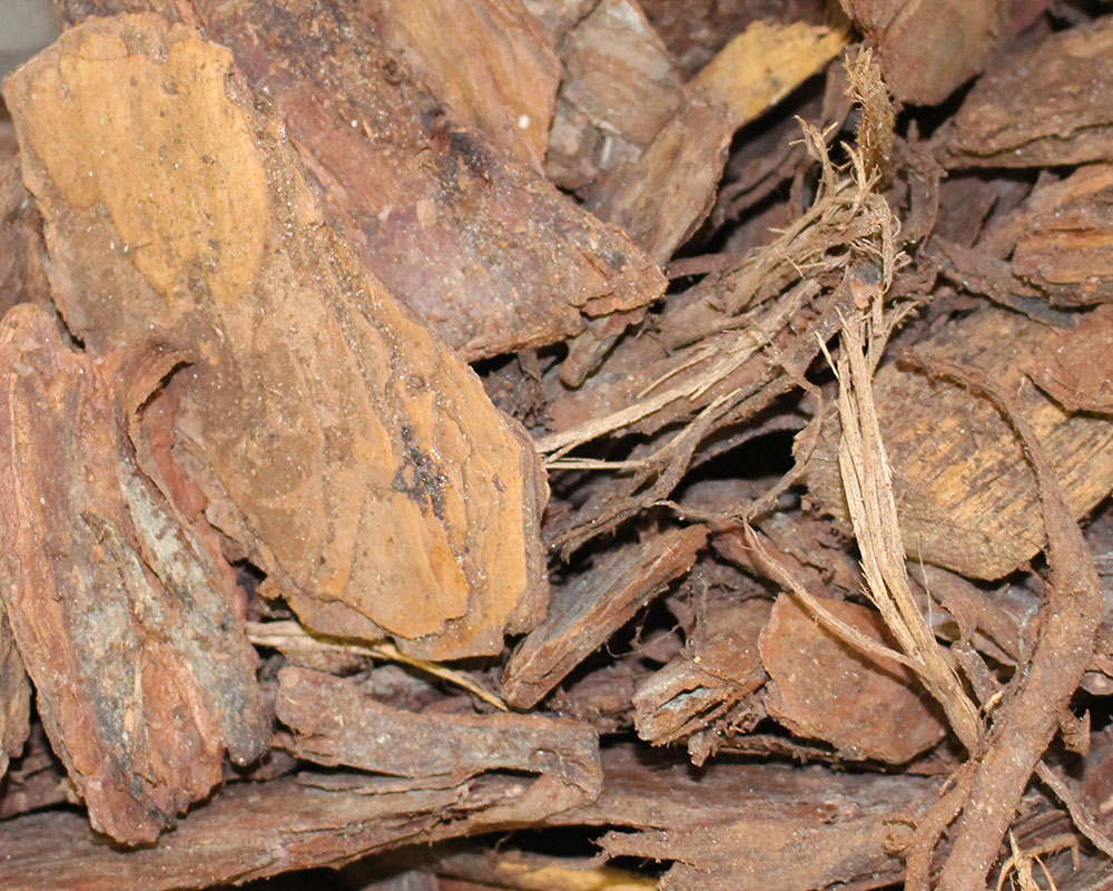 Bag Mulch Pine Bark Nuggest.JPG